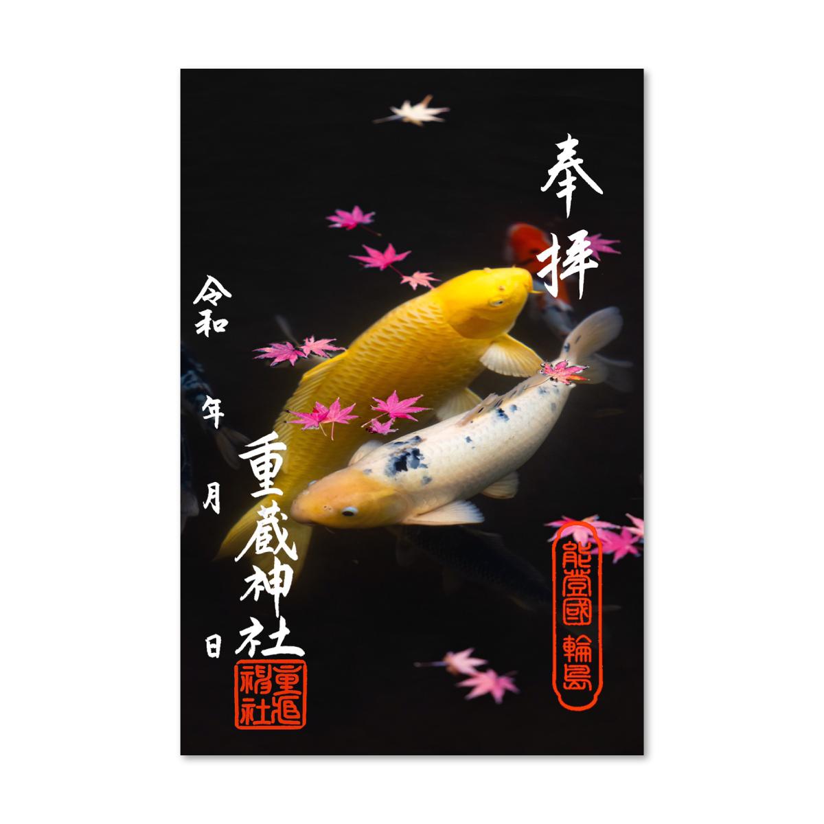 79.紅葉と鯉